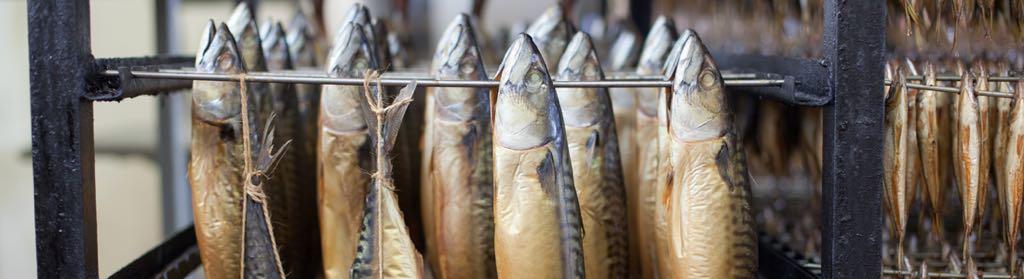 Makreelroken Noordwijk